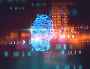 مدیریت خطرات سایبری